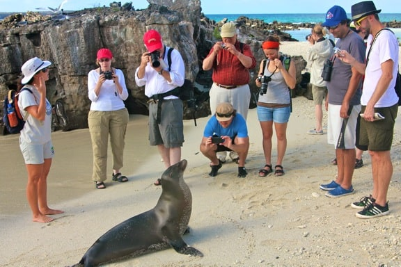 Ecotourists photographing a Galapagos Sea Lion