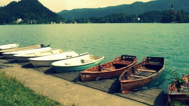 Boats Await Passengers on the Shores of Lake Bled, Slovenia