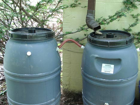 DIY Rainwater Harvesting via Rain Barrels