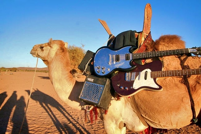 guitars on camel